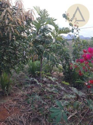 Terreno à venda, 870 m² por r$ 150.000 - quilombo - cantagalo/rj - Foto 3