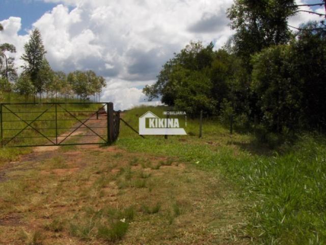 Terreno para alugar em Chapada, Ponta grossa cod:01744.002 - Foto 2