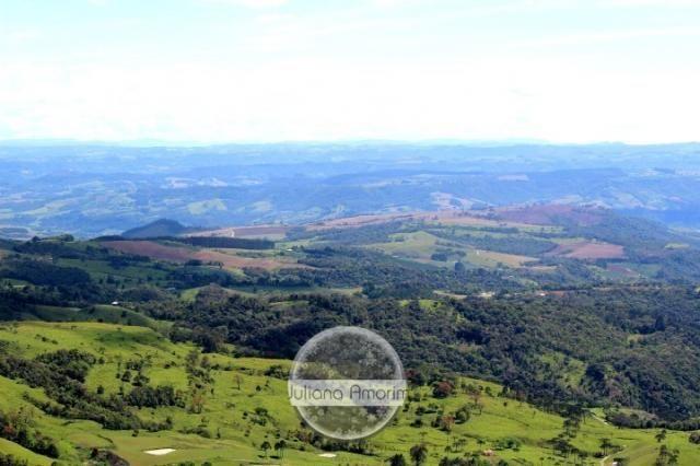 Seu sitio em Bom Retiro na Serra Catarinense - Foto 11