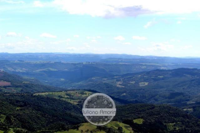 Seu sitio em Bom Retiro na Serra Catarinense - Foto 8