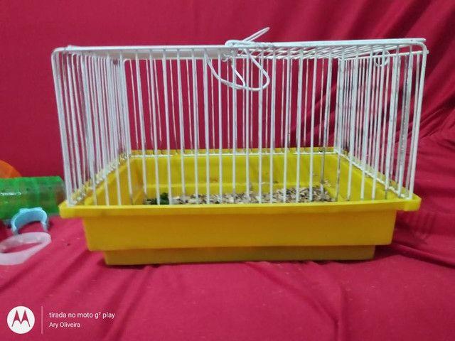 Vende-se gaiolas para hamster  - Foto 4