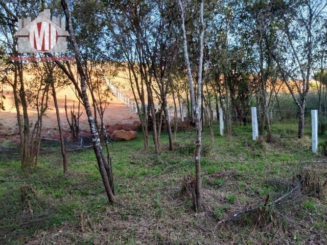 Lindo terreno com escritura, poço semi-artesiano e energia elétrica em Pedra Bela - Foto 17