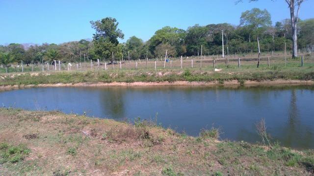 Chácara no Setor Agrícola, em Média, há 20km de Imperatriz - Foto 8