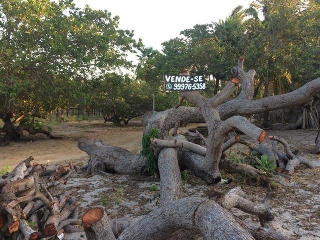 Terreno bem localizado dentro da vila de Barra Grande