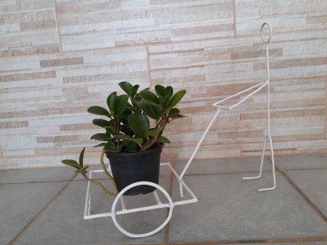 Artesanato - Porta vaso - Foto 3