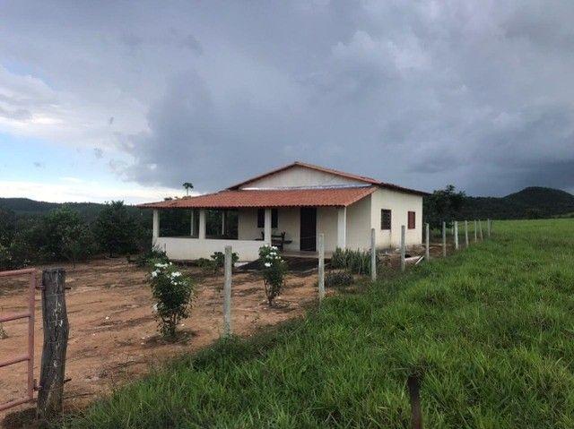 Fazenda 56 alqueires é meio  no município de Goianésia   - Foto 6