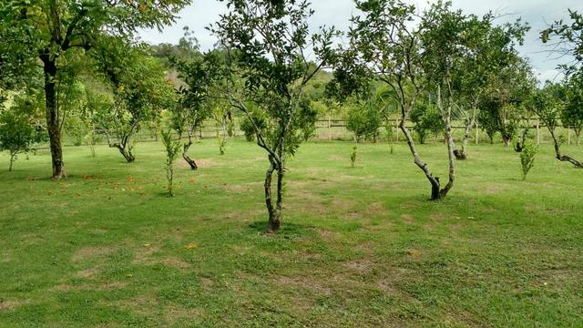 Belíssimo sítio em Agro Brasil - Cachoeiras de Macacu RJ 116 oportunidade!!!! - Foto 15
