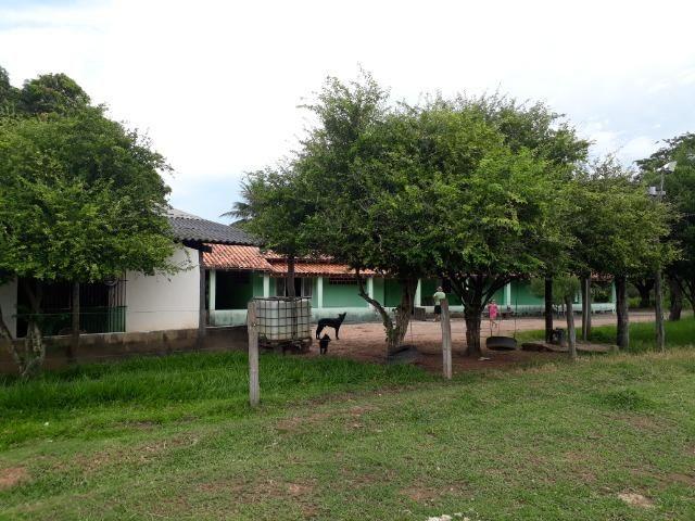 """Confinamento ou Laticínio na comunidade olho d""""agua na BR 364 a 30 km de Cuiabá - Foto 17"""