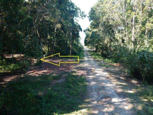 Terreno à venda, 384 m² por r$ 42.000 - praia das palmeiras - itapoá/sc