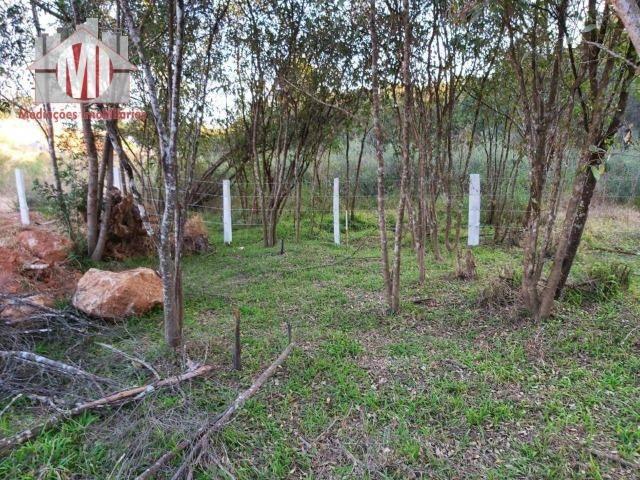 Lindo terreno com escritura, poço semi-artesiano e energia elétrica em Pedra Bela - Foto 18