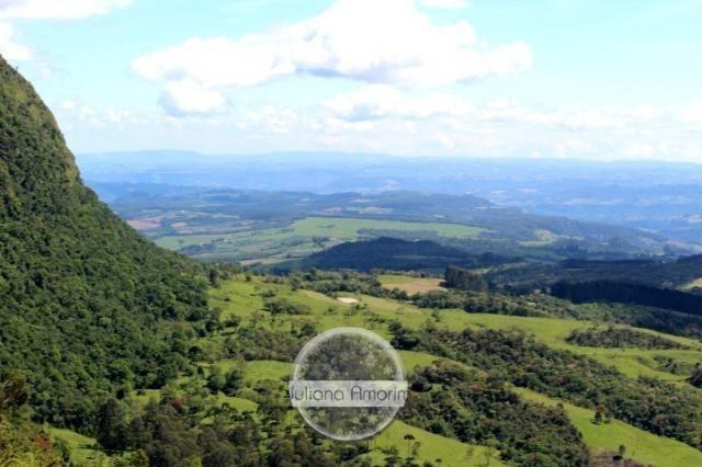 Seu sitio em Bom Retiro na Serra Catarinense - Foto 10