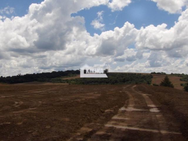 Terreno para alugar em Chapada, Ponta grossa cod:01744.002