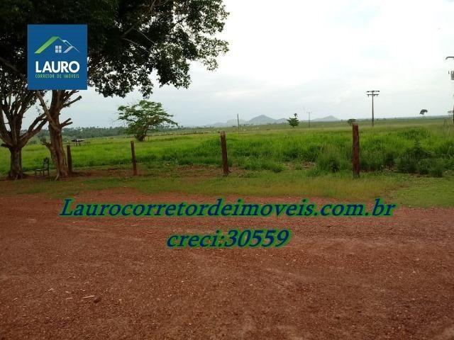 Fazenda com 28.500 ha. na Região de Araguaína TO - Foto 3