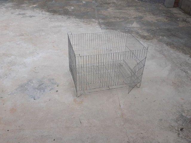 Gaiola para porquinho da india valor 130 - Foto 2