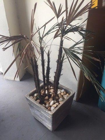 Vazo decorativo - Foto 3