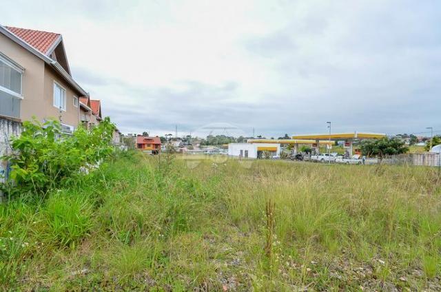 Terreno à venda em Pinheirinho, Curitiba cod:133325 - Foto 13