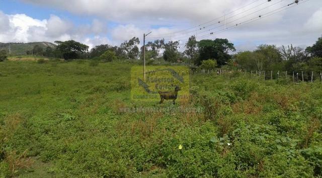 Excelente Área Plana De 40,5 Hectares - Gravatá/PE / Propriedade ID : A0261 - Foto 13