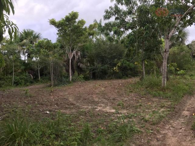 Terreno rural à venda, zona rural, barreirinhas - te0144. - Foto 5