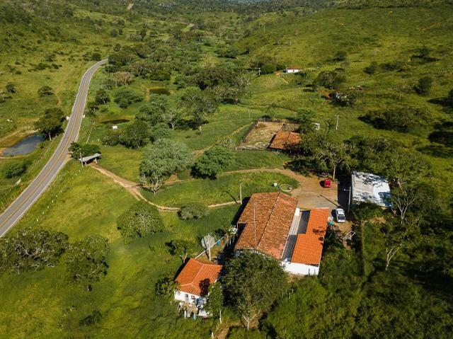 Magnífica fazenda 3.330 tarefas, a 23 km de jequié, br 116 na porta