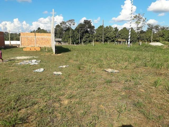 Terreno próx a curva do Tucumã - Foto 4