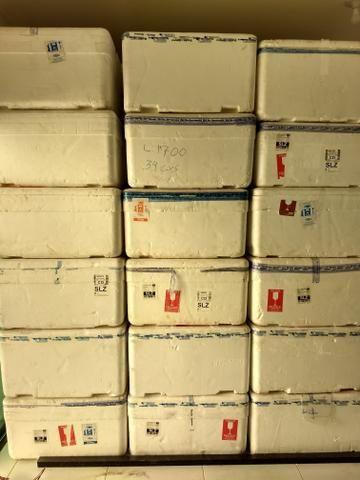 Caixas de Isopor 100/120 lts R$: 15,00 - Foto 5
