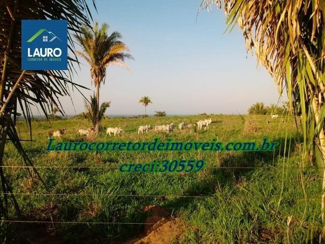 Fazenda com 28.500 ha. na Região de Araguaína TO - Foto 14