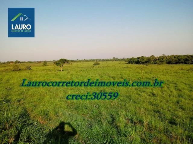 Fazenda com 28.500 ha. na Região de Araguaína TO - Foto 15