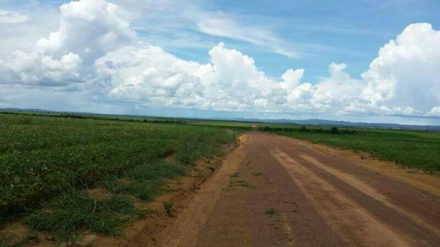 Fazenda em Mato Grosso