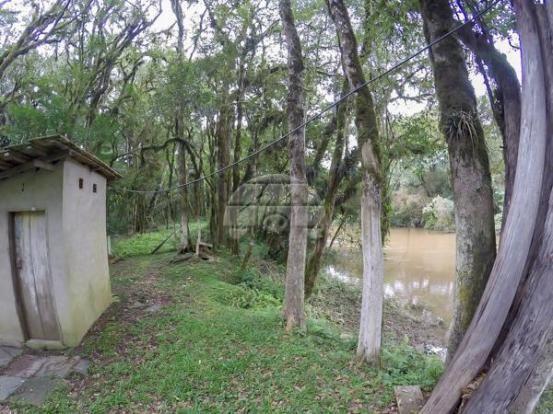 Chácara à venda em Picassinho, Piên cod:136674 - Foto 6