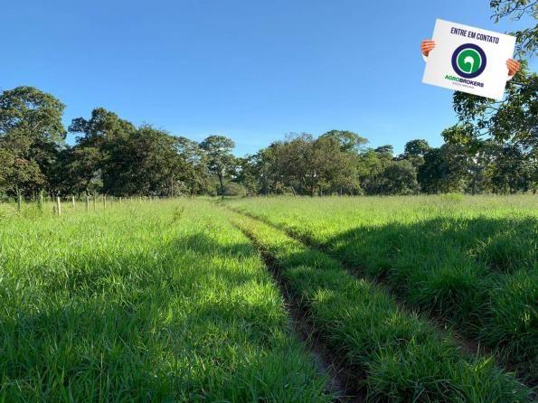 Fazenda região de rosário oeste - Foto 6
