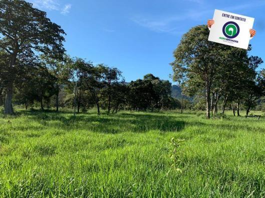 Fazenda região de rosário oeste - Foto 12