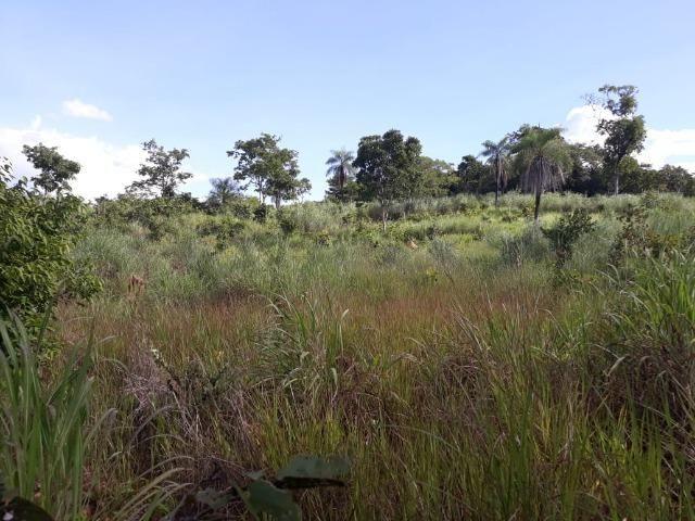 Sitio região lago do manso - Foto 9