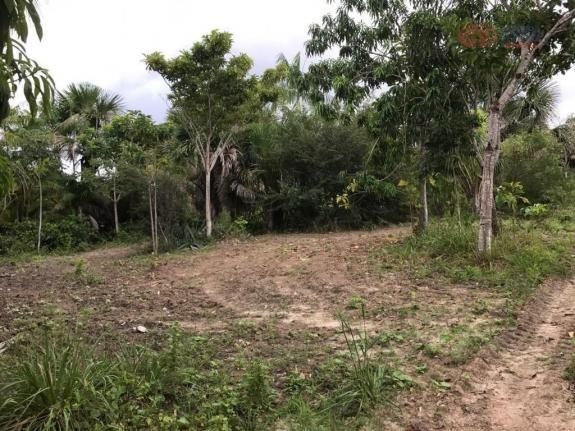 Terreno rural à venda, zona rural, barreirinhas - te0144. - Foto 4