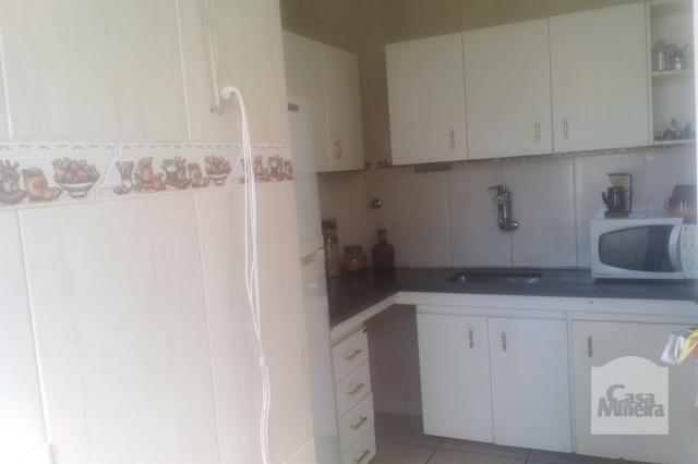 Apartamento à venda com 3 dormitórios em Jardim montanhês, Belo horizonte cod:252172 - Foto 11