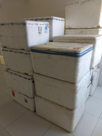 Caixas de Isopor 100/120 lts R$: 15,00 - Foto 3