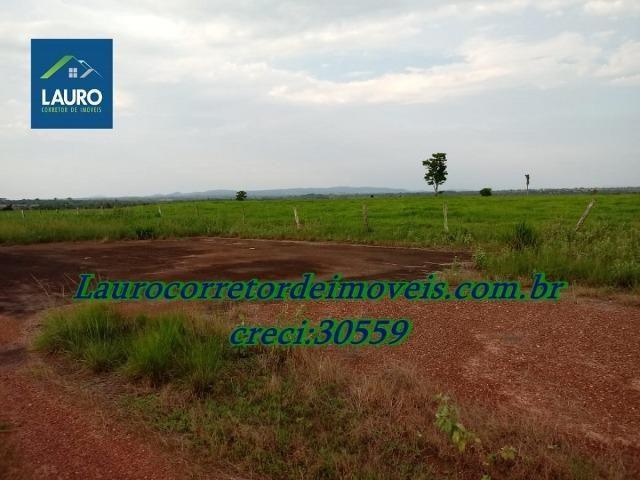 Fazenda com 28.500 ha. na Região de Araguaína TO - Foto 9