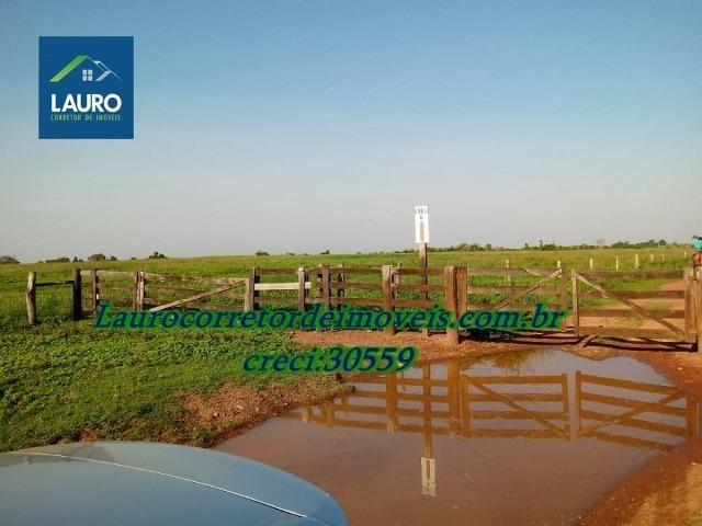 Fazenda com 28.500 ha. na Região de Araguaína TO