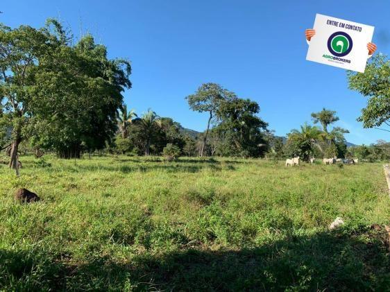 Fazenda região de rosário oeste - Foto 15