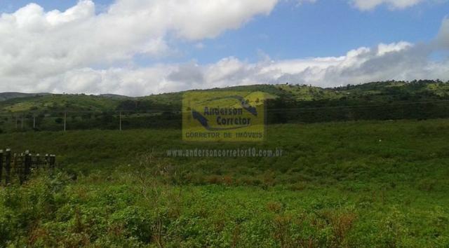Excelente Área Plana De 40,5 Hectares - Gravatá/PE / Propriedade ID : A0261 - Foto 12