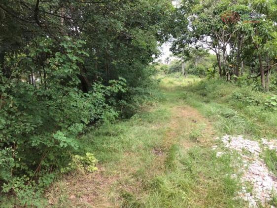 Terreno rural à venda, zona rural, barreirinhas - te0144. - Foto 3