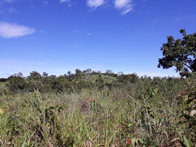 Sitio região lago do manso - Foto 5