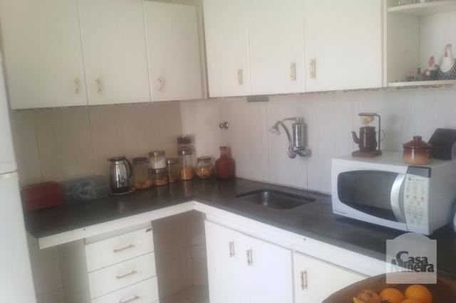 Apartamento à venda com 3 dormitórios em Jardim montanhês, Belo horizonte cod:252172 - Foto 9