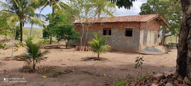 Vende ou troca sítio na cidade de Cuité de mamanguape.medindo60/60. - Foto 6