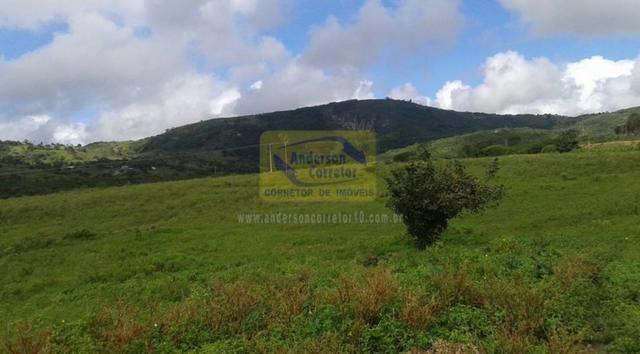 Excelente Área Plana De 40,5 Hectares - Gravatá/PE / Propriedade ID : A0261 - Foto 14