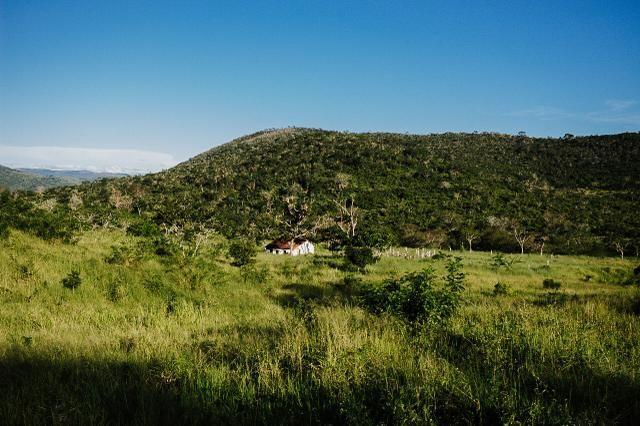 Magnífica fazenda 3.330 tarefas, a 23 km de jequié, br 116 na porta - Foto 14