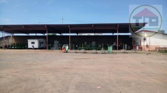 Área à venda, 5000 m² por R$ 2.000.000,00 - Jardim União - Marabá/PA - Foto 7