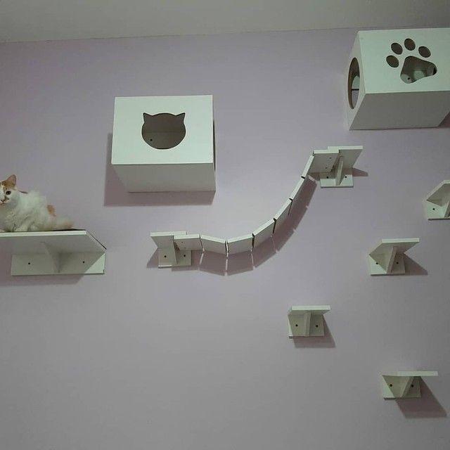 Conjunto nichos para gatos 9 peças eu instalo  - Foto 2