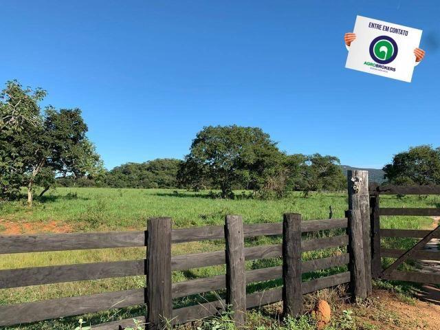 Fazenda região de rosário oeste - Foto 5