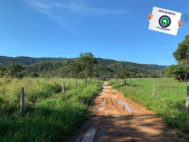 Fazenda região de rosário oeste - Foto 9