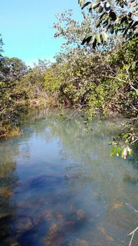 Sitio região lago do manso - Foto 4